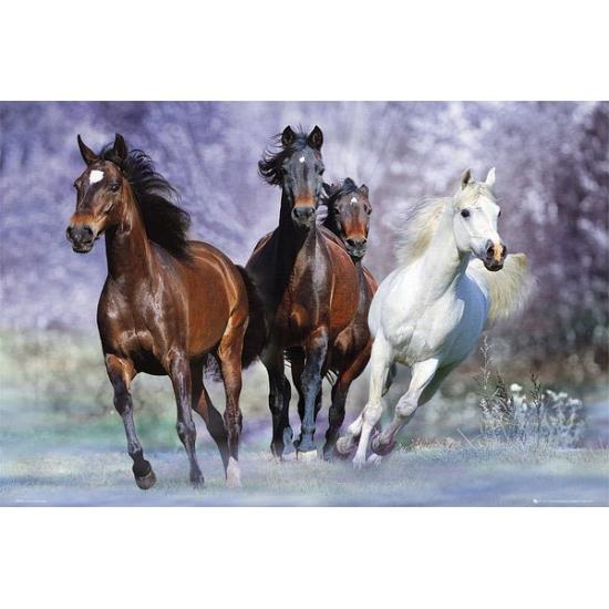 Muur decoratie rennende paarden van Bob Langrish