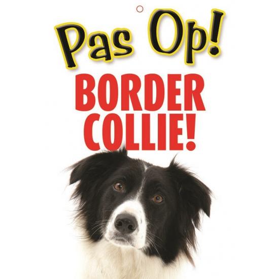 Waakbord Border Collie hond