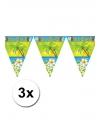 3 tropical vlaggenlijnen Aloha 5 meter