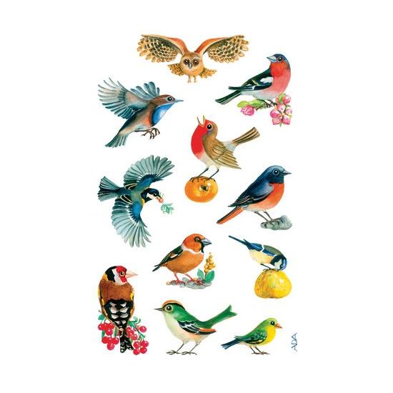 3 vellen met vogel stickers Geen Schoolspullen