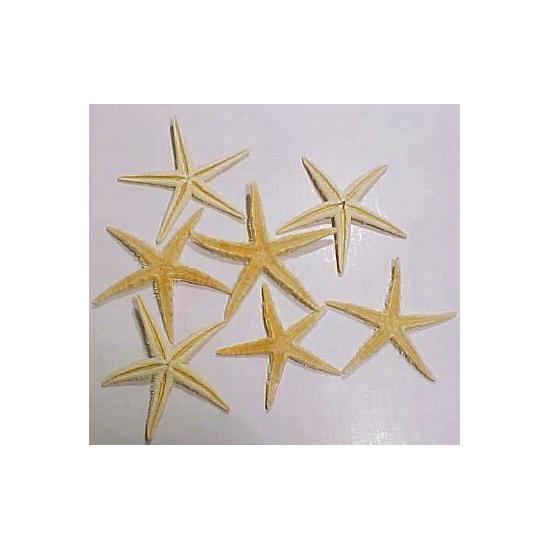 6x stuks decoratieve zeesterren 10 cm