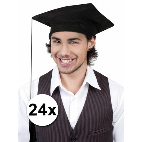 Afstudeer hoedjes geslaagd 24x
