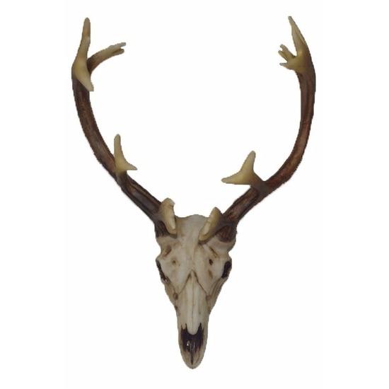 Decoratie hertengewei 26 cm