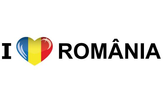 Landen versiering en vlaggen Shoppartners Koffer stickers I Love Romania
