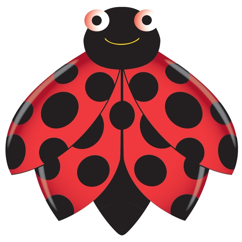 Speelgoed vlieger lieveheersbeestje 76 x 112 cm