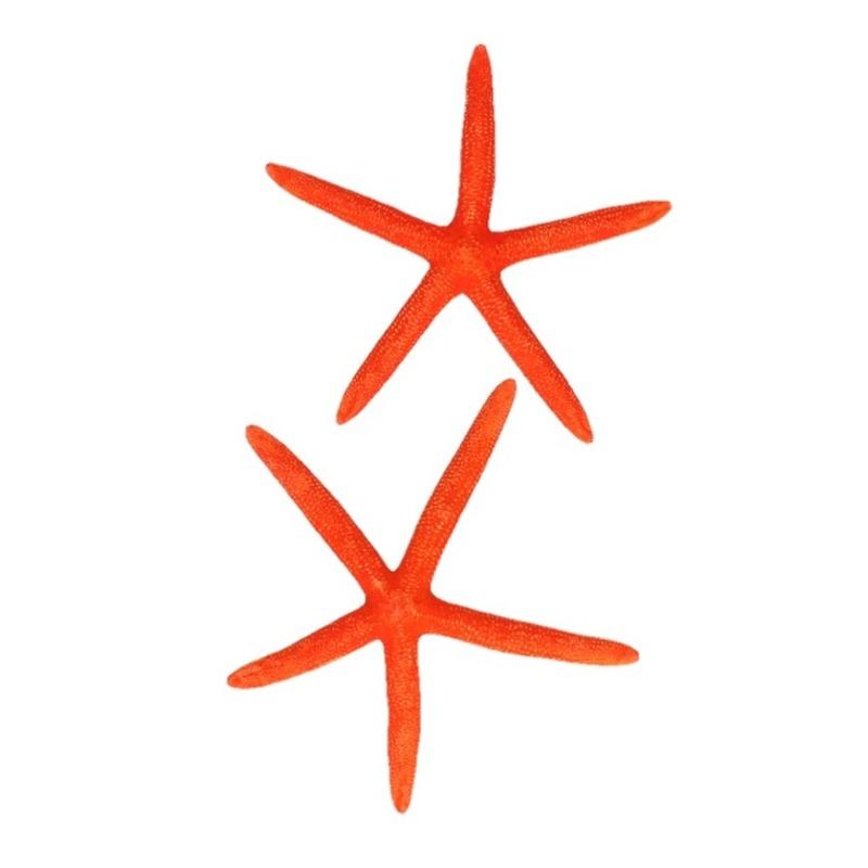 Strand themafeest decoratie zeesterren oranje