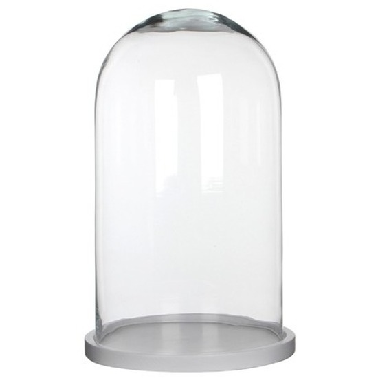 Woondecoratie stolp 23 x 38 cm transparant glas met wit houten voetje